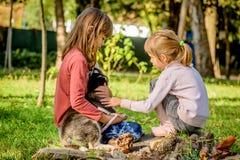 Petites filles jouant avec le chiot enroué en parc Photographie stock libre de droits
