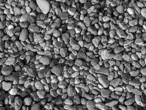 Petites pierres de mer de rivière Fond d'été pierre noire et blanche de caillou matrerial Images libres de droits