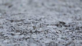 Petites pierres grises avec le fond diffus photos libres de droits