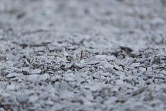 Petites pierres grises avec le fond diffus photographie stock libre de droits