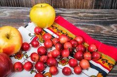 Petites pommes de paradis et les grandes pommes habituelles Photographie stock libre de droits