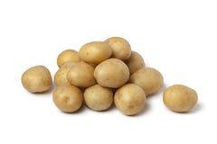 Petites pommes de terre de primeurs Photographie stock