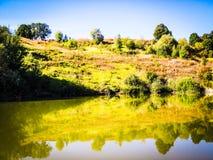 Petites rivière et forêt de septembre images stock
