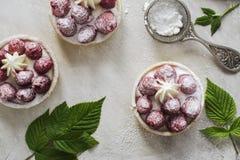 Petites tartes douces avec la framboise fraîche Photographie stock libre de droits