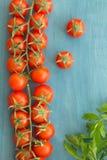 Petites tomates-cerises sur un bleu en bois Photo libre de droits