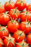 Petites tomates-cerises sur un bleu en bois Photos libres de droits
