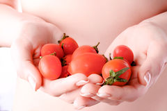 Petites tomates dans les mains d'une fille Photos libres de droits