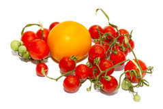 petites tomates rouges Images stock