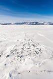 Petits blocs de glace Photographie stock libre de droits