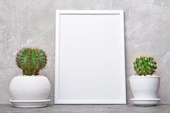Petits cactus dans des pots de fleur et la maquette du cadre blanc avec l'espace de copie pour l'affiche images stock