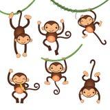 Petits caractères mignons de singes Photos stock