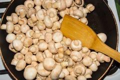 Petits champignons frits dans une casserole dans son ensemble Champignons frits aux oignons Image libre de droits