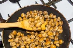 Petits champignons frits dans une casserole dans son ensemble Champignons frits aux oignons Photographie stock libre de droits