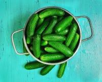 Petits concombres verts Images libres de droits