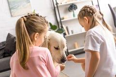 petits enfants alimentant le chien de golden retriever avec des festins image stock