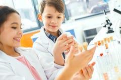 Petits enfants apprenant la chimie dans le laboratoire d'école montrant des fioles photos libres de droits