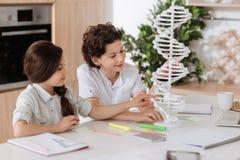 Petits enfants doux contrôlant le modèle d'ADN Image stock