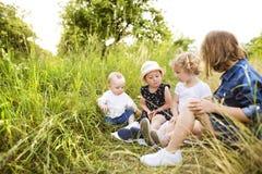 Petits enfants mignons dehors dedans en nature verte d'été Photographie stock