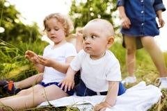 Petits enfants mignons dehors dedans en nature verte d'été Photo libre de droits