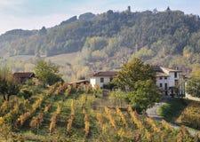 Petits ferme de société et vignoble d'Oltrepo Pavese, en Italie photographie stock libre de droits