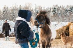 Petits fille, entraîneur de cheval et cheval en hiver Photos libres de droits
