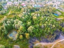 Petits forêt, marais et pré Images stock