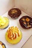 Petits gâteaux dans la boîte de transporteur de carboard Photographie stock