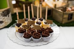 Petits gâteaux de chocolat Image stock