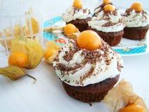 Petits gâteaux de chocolat avec le physalis Photographie stock libre de droits