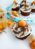 Petits gâteaux de chocolat avec le physalis Photos stock