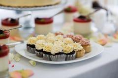 Petits gâteaux de chocolat et de vanille Images stock