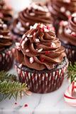 Petits gâteaux de menthe poivrée de chocolat avec la canne de sucrerie Image stock