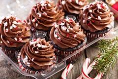 Petits gâteaux de menthe poivrée de chocolat avec la canne de sucrerie Photographie stock libre de droits
