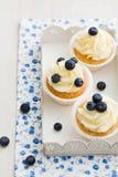 Petits gâteaux de myrtille images libres de droits