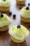 Petits gâteaux de myrtille avec la crème Image stock