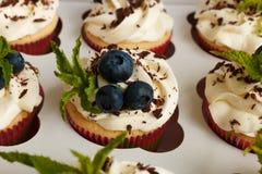 Petits gâteaux faits main avec de la crème de beurre, le chocolat râpé, les feuilles en bon état et les myrtilles dans un boîtier Image libre de droits