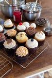 Petits gâteaux gastronomes assortis Images stock