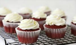 Petits gâteaux rouges de velours images libres de droits