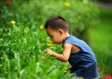 Petits garçon et fleurs asiatiques Image libre de droits