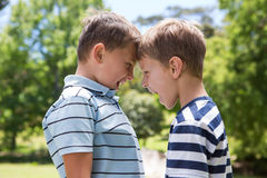 Petits garçons ayant un combat image stock