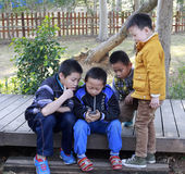 Petits garçons jouant un nouveau téléphone Photo libre de droits