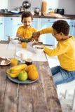 Petits garçons optimistes jouant le combat de dinosaure dans la cuisine Photos stock