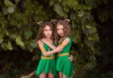 Petits habitants de forêt image stock