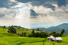 Petits hutte, gisements de riz et montagne au village de Bongpieng Image libre de droits