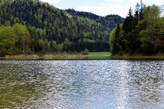 Petits lac/étang tranquilles à côté de la route alpine allemande, Bavière, Allemagne Photographie stock