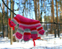Petits mitaines/gants de bébé accrochant par un fil dans le jour d'hiver sous la neige en baisse Photographie stock