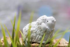 Petits moutons non colorés dans une herbe Décoration de fête Joyeuses Pâques Photographie stock libre de droits