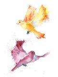 Petits oiseaux d'aquarelle Photos stock