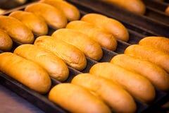 Petits pains avec des saucisses photos stock