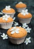 Petits pains avec les fleurs sensibles sur une table rustique noire Images libres de droits